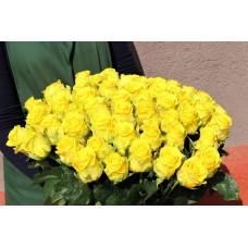 Букет из 55 роз Пэнни Лэйн с лентой